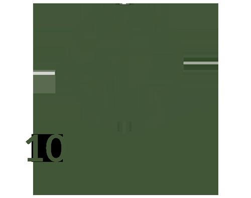Ayahuasca Courses