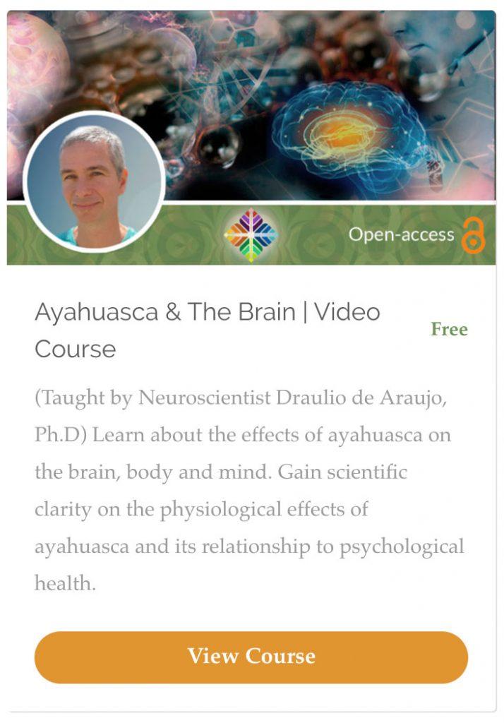 Ayahuasca and the brain