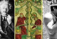 Ayahuasca alchemy