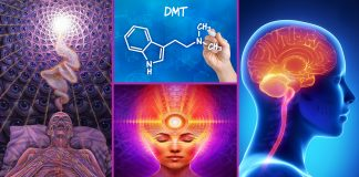 Mystical Pineal Gland DMT