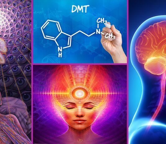 Mystical Pineal Gland DMT