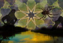 ayahuasca-sorcery