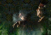 shaman-ayahuasca