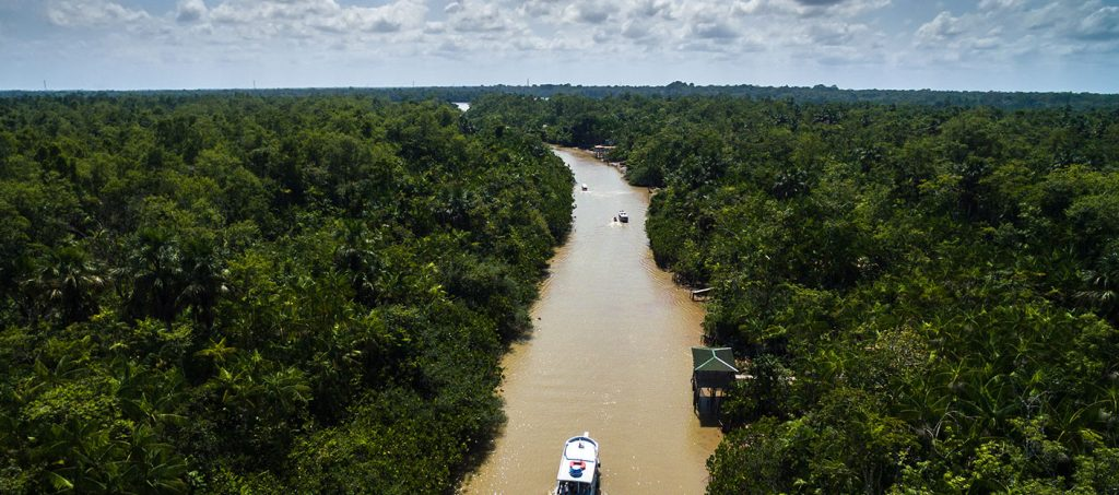 ayahuasca-tourism-amazon