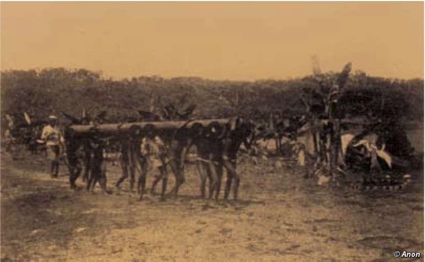 ayahuasca rubber boom