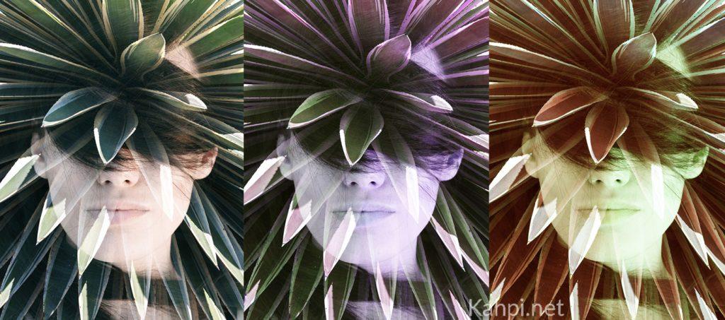 ayahuasca-modern-life
