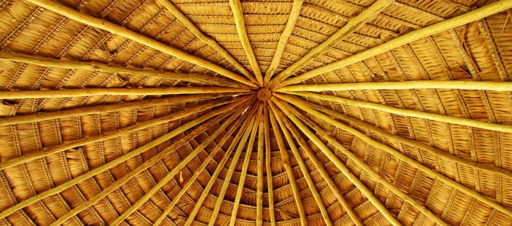 ayahuasca maloca roof