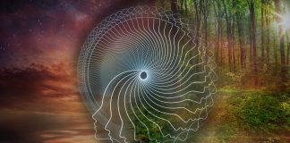 ayahuasca integration