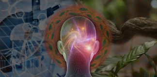 ayahuasca science