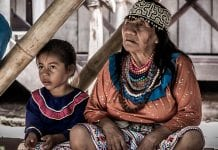 Shipibo-ayahuasca