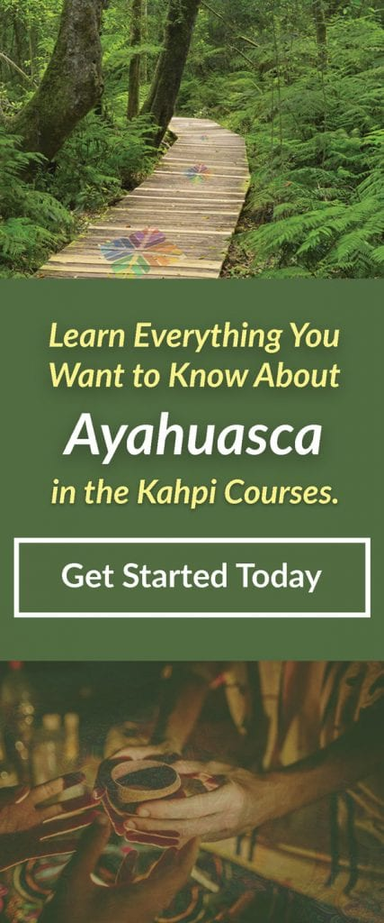 Ayahuasca courses ad 2