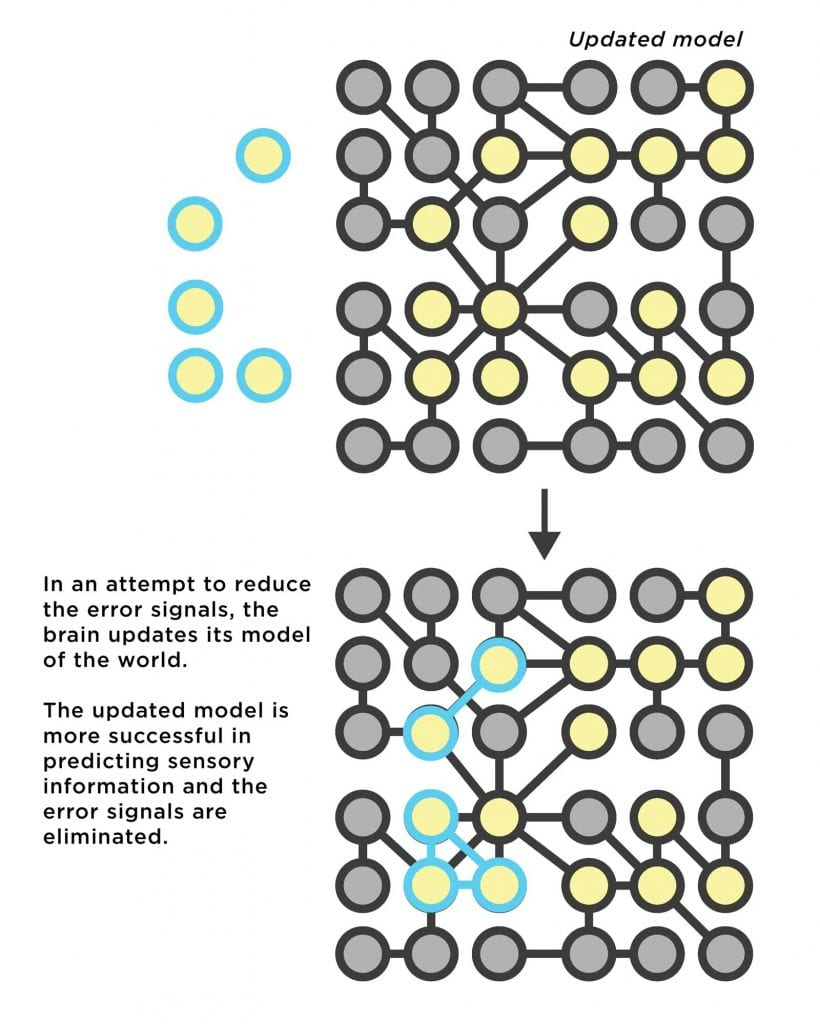 Diagram of the updated neural network which now recognizes the novel pattern of information.