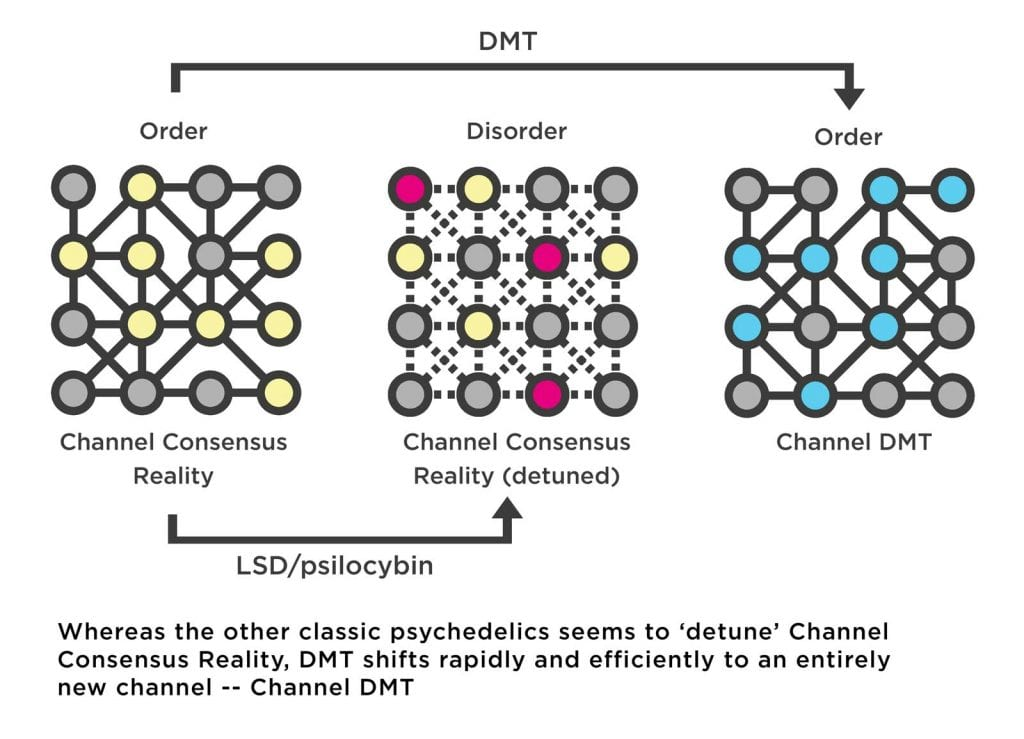 Diagram of neural connections attuning to the completely different channel created by DMT in the brain.