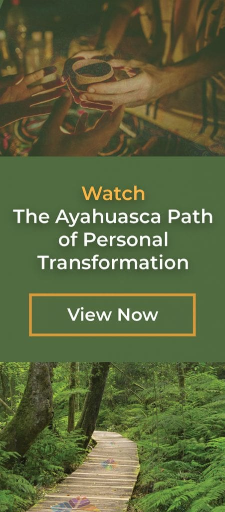 ayahuasca path course
